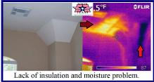 Home Inspection Insulation